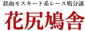 鳩レース・全国優勝の血統ウイニングモスキート・花尻充由鳩舎ホームページ